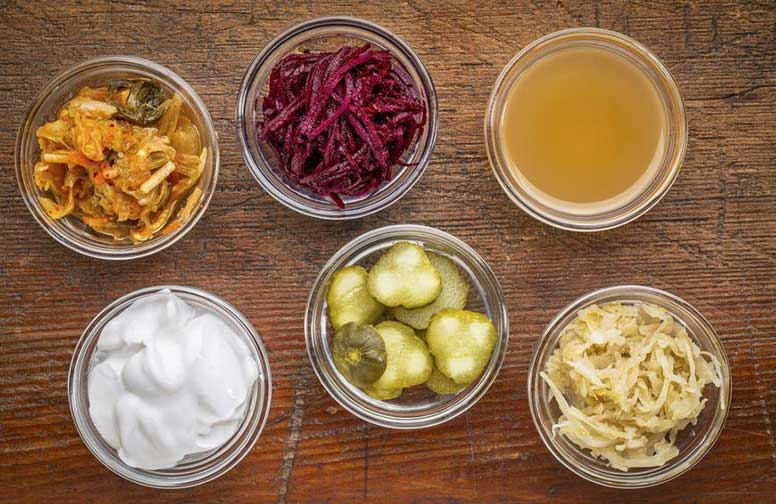 alimentos probióticos