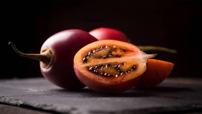 fruto tamarilho